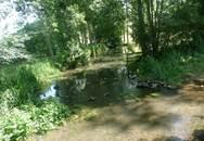 Le long de la Boivre