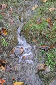 Le Galeizon, une rivière