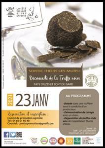 Balade - Découverte de la Truffe noire du Pays d'Uzès et Pont du Gard