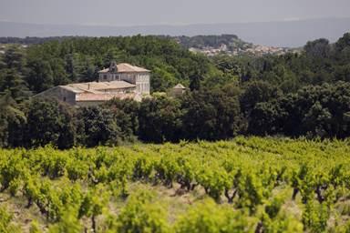 Château de Trinquevedel