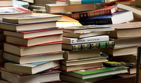 Séné à la page - Salon du livre