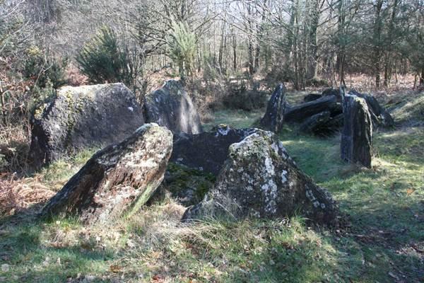 Loge Morinais - Monteneuf - Morbihan Bretagne sud CDT56 - P GOUEZIN