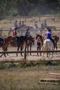 Stages Sports Gard Equitation