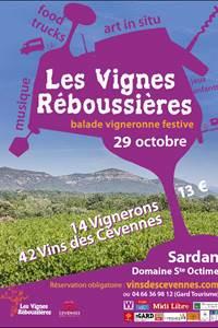 Les vignes réboussières, balade vigneronne décalée