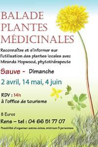 "Balade ""Plantes médicinales"""