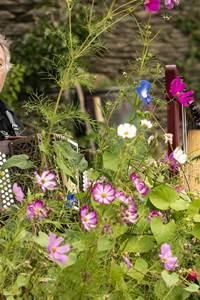 Festi'Borgne - Spectacles à l'Oeil - Concert Heim