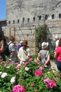 Le jardin Médiéval propose le lieu « rien que pour vous », votre famille et vos amis