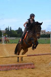 Centre Equestre de Méjannes le Clap