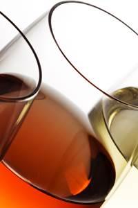 Balade vigne et vin à Saint-Victor-la-Coste