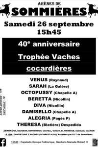 Course camarguaise Trophée Vaches cocardières Sommières