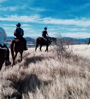 Puen island (horse ride in a ranch)