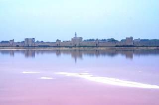 Le Sel de la Baie d'Aigues-Mortes