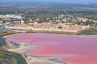 Aigues-Mortes, entre histoire et nature sauvage