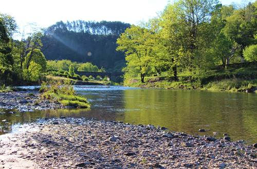rivière limpide avec profondeur progressive ©