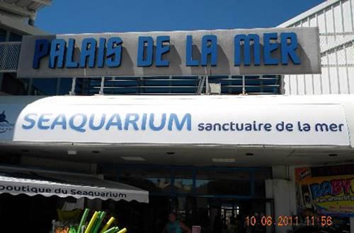 Seaquarium ©