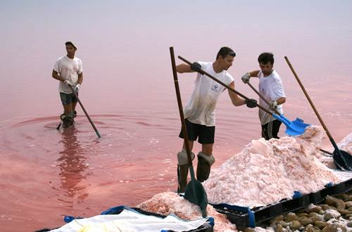 Salin d'Aigues Mortes - Sauniers ©