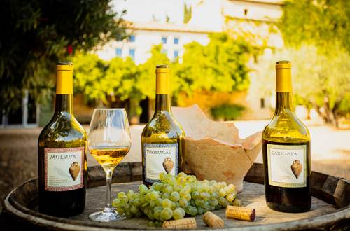Mas des Tourelles - Romanum Vinum ©