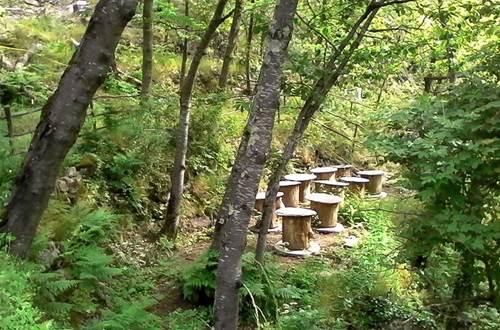 Ecoferme Graine de fourmis 6 ©