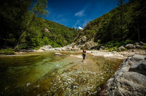 Camping Cévennes Provence - 06 ©