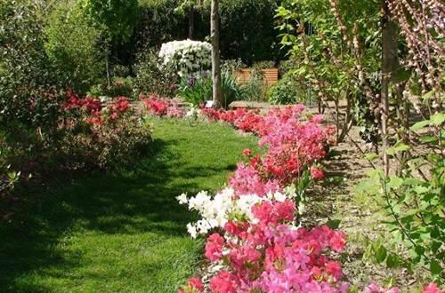 Parc Camellias ©