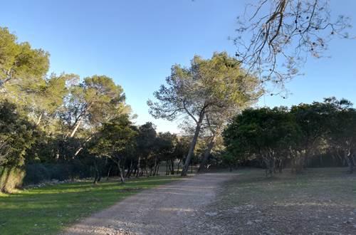 asinerie-badjane-promenade-piste-vers-la-garde-de-dieu ©